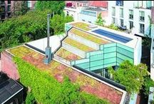 Utrecht Urban Green / Urban green for sustainable and dynamic cities.