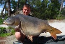 Real Big Catches / Great and memorable catches with SBS Baits