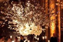 Floral / Wedding flowers!
