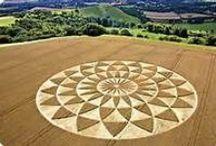 Agroglyphe / Crop circle