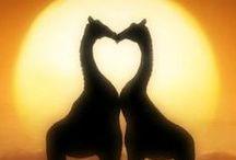 ♡ Coups de  ♡♥♡  à partager ♡ / ♡♥♡Epinglez tous vos coups de COEUR ♡♥♡ juste des images comportant un coeur svp, merci beaucoup!
