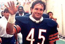 Da Bears / I bleed orange and blue, Bears fan till I die. Bear Down! / by Denise Roberts