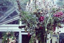 #fawzywedding / Ideas for our wedding ❤️