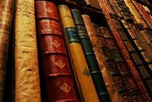Bookworm's Delight / NO PIN LIMITS, ENJOY - Magnificent reading rooms.  / by Renee Schachair