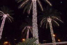 Dubai reizen / vakanties / Persoonlijke reizen naar Dubai waar alle aandacht is voor de klant.