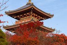 JAPAN / by Ririko Dee