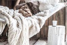 * cozy *