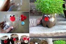 Garten - und Zimmerpflanzen / Bubikopf gestalten