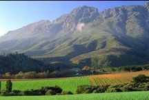 Stellenbosch - Wine country / This is where I live - lucky me! :)