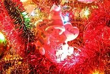 'Tis the Season by Concepts Photography / My Family Christmas pictures by Concepts Photography http://conceptsdandp.com/
