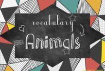 ESL-Vocab-Animals / animals, esl, worksheets, vocabulary