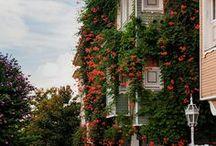 PASSPORT •  istanbul