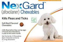 Lowest Priced Pet Meds from PetPlus