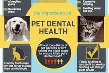 Pet Infographics / Visually appealing pet information and tips