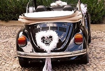 Wedding Transportation / Great and crazy transportation ideas for your wedding day.