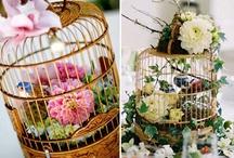 Birdcages in deco