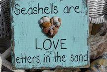 * Schelpen - Shells * / by Deborah