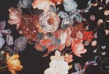 ♥ wallpaper