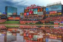 St.Louis Cardinals <3 / by Anna Hunt