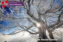 """Des réseaux sociaux aux couleurs de l'actu // Up-to-date social media / Chaque mois, tous les réseaux sociaux du Département de la Haute-Savoie se mettent aux couleurs de l'actualité locale, nationale ou internationale. Découvrez la collection de """"cover"""" photos du #Dep_74."""
