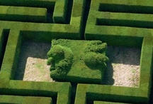 Maze, labyrinth, doolhoven / Maze, labyrinth, doolhoven, Irrgarten hedges, hagen, hecken, haies hedge, haag, heg, hecke, haie