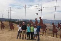Guided tours Camino de Santiago  / Santiago de Compostela. Camino . Pilgrim´s Way