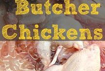 Butchering and Processing Animals with The Flip Flop Barnyard and Friends / Butchering and processing livestock and wild game for the homestead. Pinners: Share up to 3 pins per day. Try to spread duplicate content out. Feel free to add quality content from others as well. Please share from this board as well. Happy Pinning! (If you would like to contribute to this board please message me)