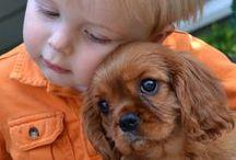 Deti, psi a mačky