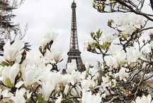 Paris is always a good idea / Pictures of Paris