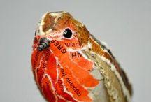 birdy / ptaki ptaszęta różnego sortu