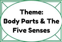 Theme: Body Parts & The Five Senses / by Lauren Elizabeth