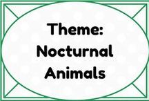 Theme: Nocturnal Animals - Spiders, Bats, Owls, Cats