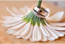 Rings of Love / inspirational ring pictures, styles, cuts, men's and women's bands