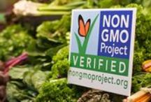 Non GMO / News, recipes, articles relating to non genetically modified organisms