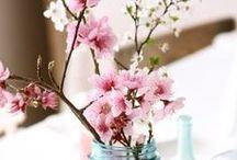 Spring / De lente