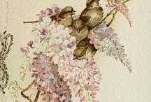 Spring ☂