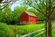 Barns / by Janet Romano