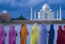 India / by Elena Shadle