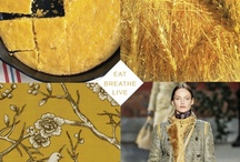 Honey Gold / by Eat Breathe Live Color | Zoe