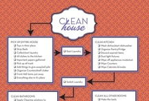{curating ideas} Cleaning Tips