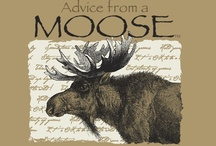 moose, elk and reindeer love / by Jackie Cavitt