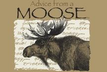 moose, elk and reindeer love / by Jackie Cavitt