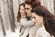 twilight...edward and bella / by Jackie Cavitt