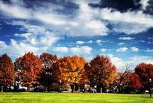 Breathtaking Fall Foliage Scenes!