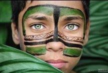 PICS / Amazing Photos around the world