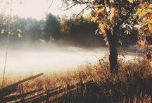 Feelin' Fall / mmmm Autumn