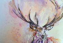 paint/watercolor / by Lauren Dixon
