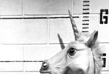 U N I C O R N / Unicorns should be everywhere  / by Rowena Gässler