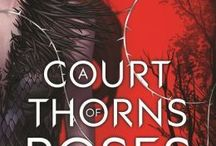 {bookish} A Court of Thorns and Roses | Sarah J. Maas | Book #1 of A Court of Thorns and Roses book series