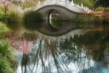 Secret Gardens  / by Lisa Clark
